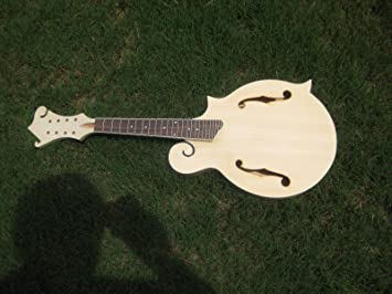 Acoustic F Mandolin Diy Builder Kit Amazonca Musical Instruments