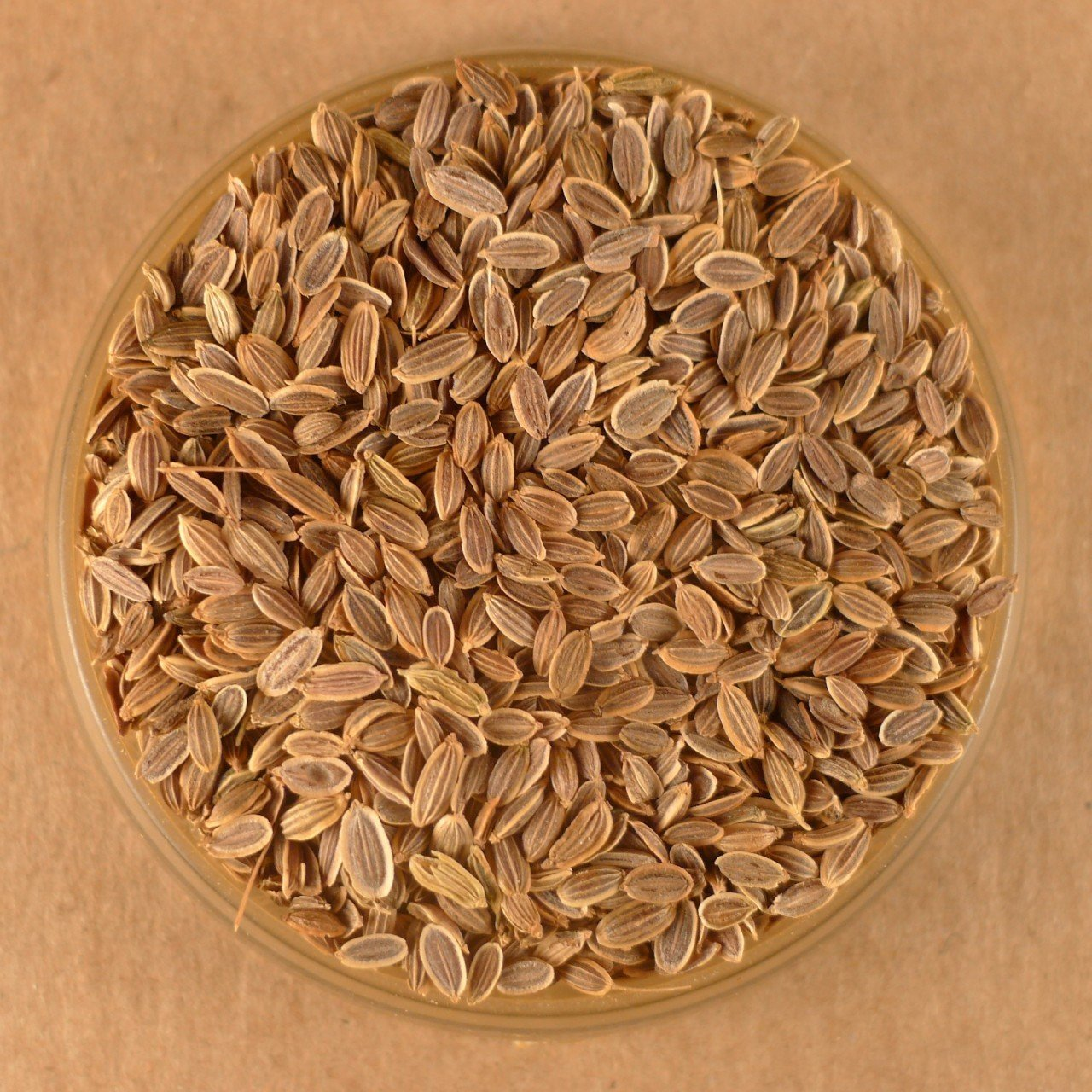 Dill Seed - Whole - 4 OZ