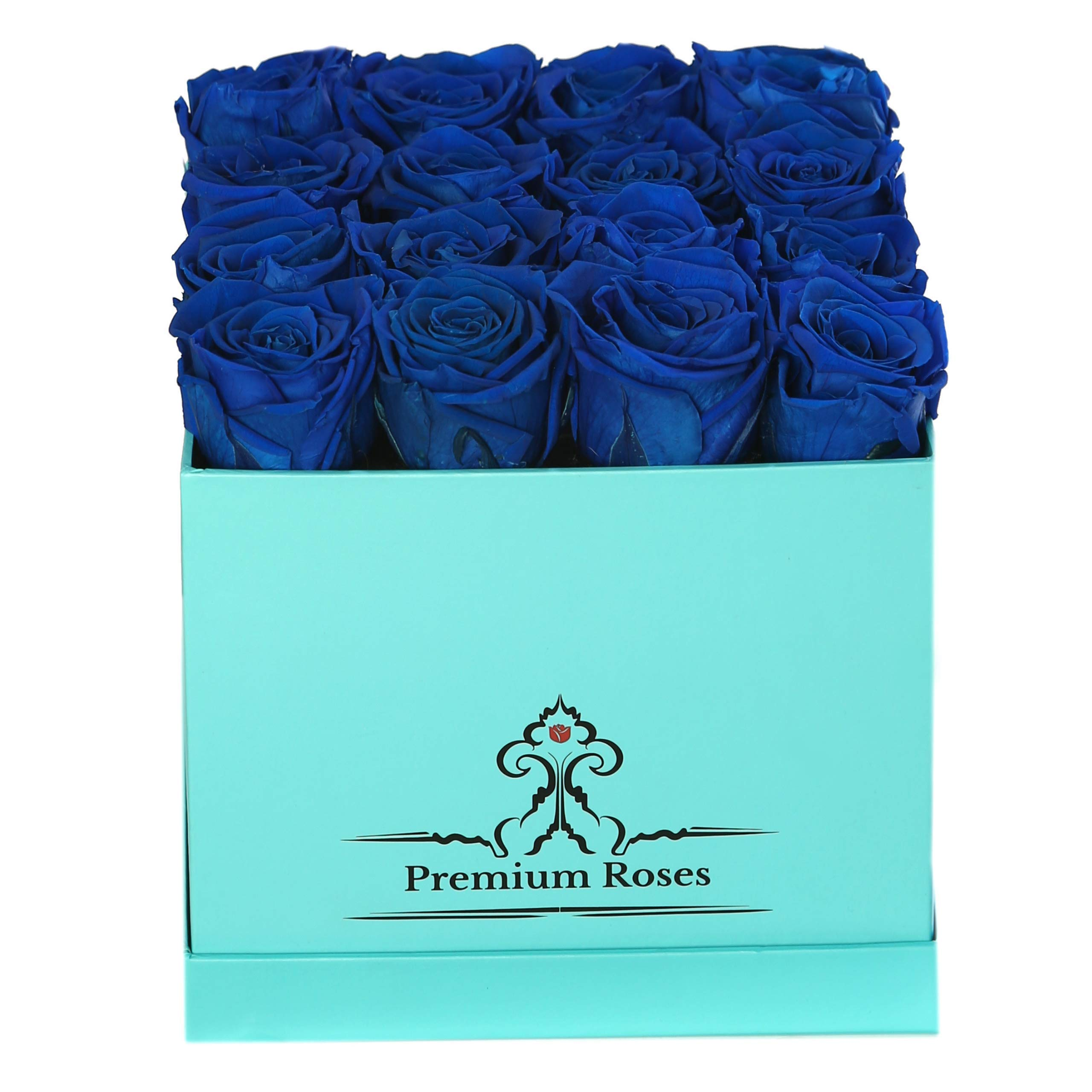 Premium Roses | Model Turquoise| Real Roses That Last 365 Days | Roses in a Box| Fresh Flowers (Blue Box, Medium)