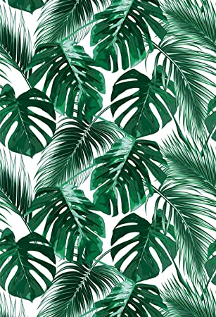 Amazon Com Muzi Tropical Palm Summer Party Photography Backdrops Green Banana Leaves Floral Wall Backdrop Wedding Stage Background Cotton Polyester Photo Studio Props Photobooth 5x6ft Xt 6196 Camera Photo We have a massive amount of if you're looking for the best tropical beach background then wallpapertag is the place to be. muzi tropical palm summer party photography backdrops green banana leaves floral wall backdrop wedding stage background cotton polyester photo studio