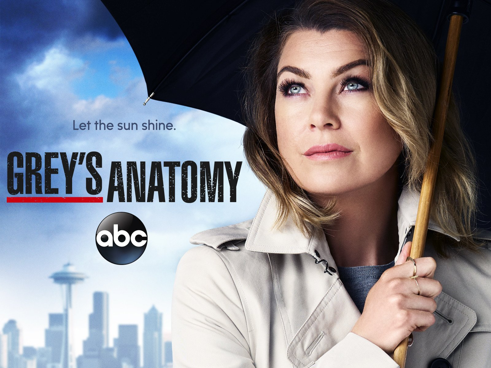 Grey's Anatomy Season 12 - Season 12