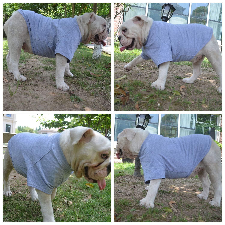 Lovelonglong Bulldog Clothes Dog Clothing Blank T-Shirt Tee Shirts for French Bulldog English Bulldog American Pit Bull Pugs 100/% Cotton Skin Care Gray B-S