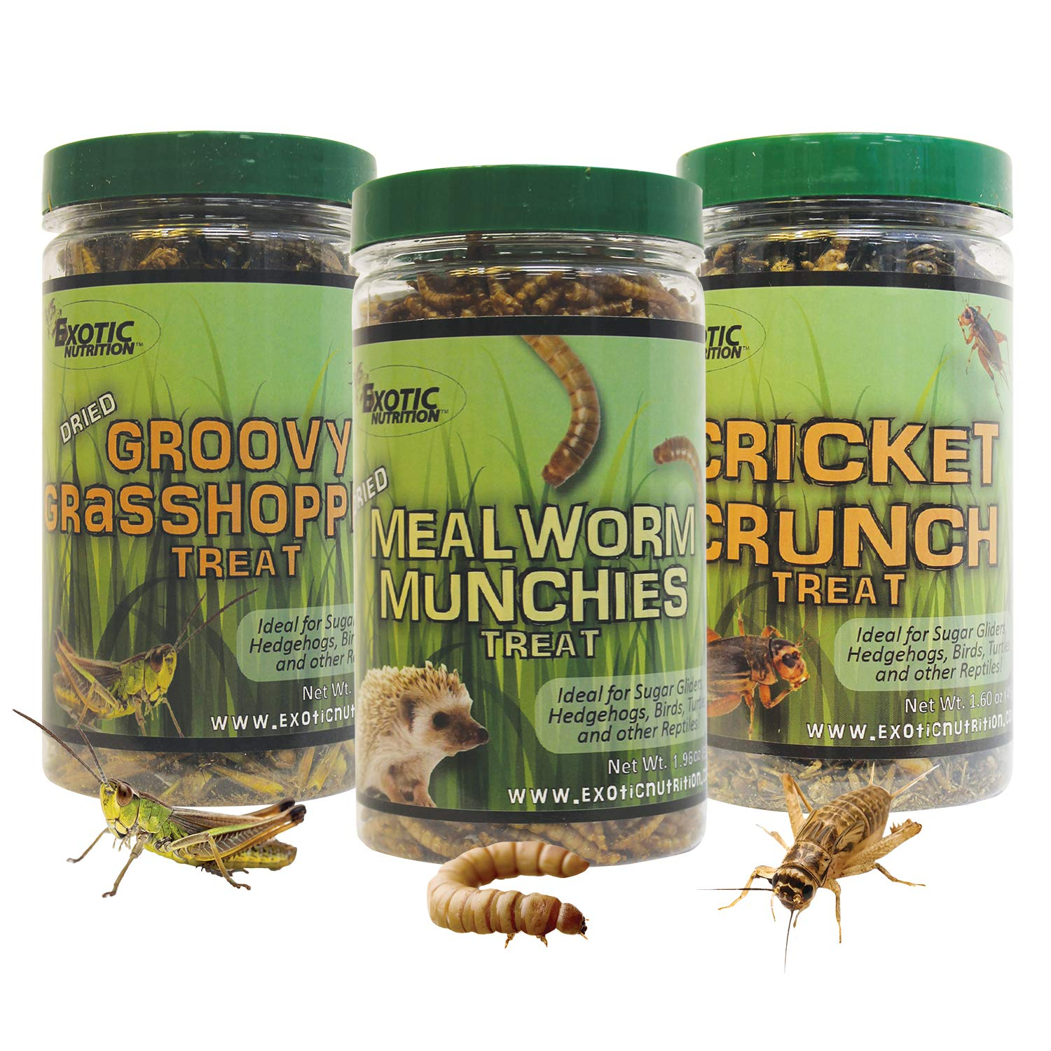 Exotic Nutrition Dried Insect 3 Pack - Crickets, Grasshoppers, Mealworms - for Sugar Gliders, Hedgehogs, Wild Birds, Chickens, Turtles, Tropical Fish, Reptiles by Exotic Nutrition