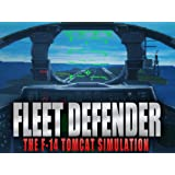 Fleet Defender: The F-14 Tomcat Simulation [Online Game Code]