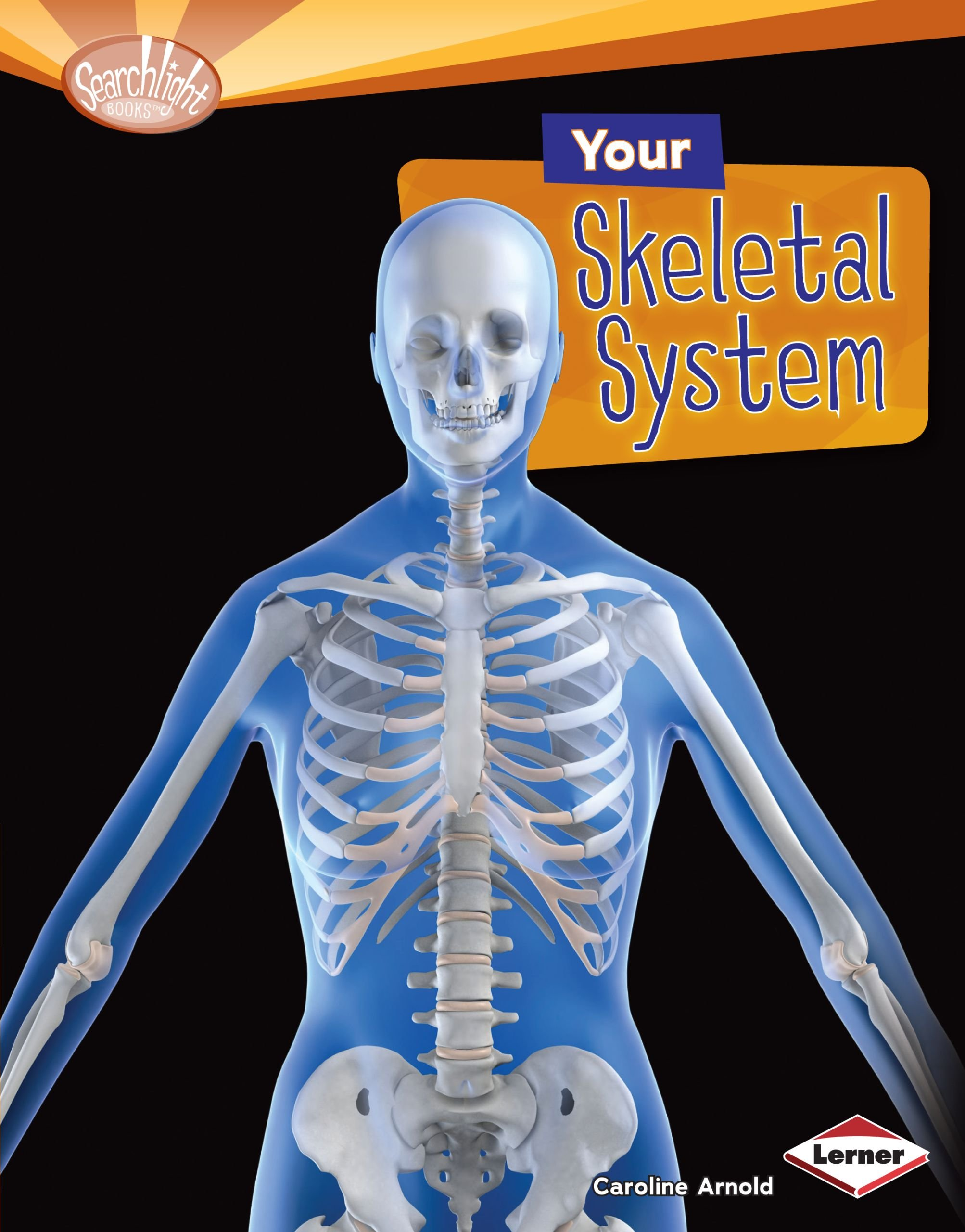 Your Skeletal System (Searchlight Books ™ — How Does Your Body Work?) (English Edition)