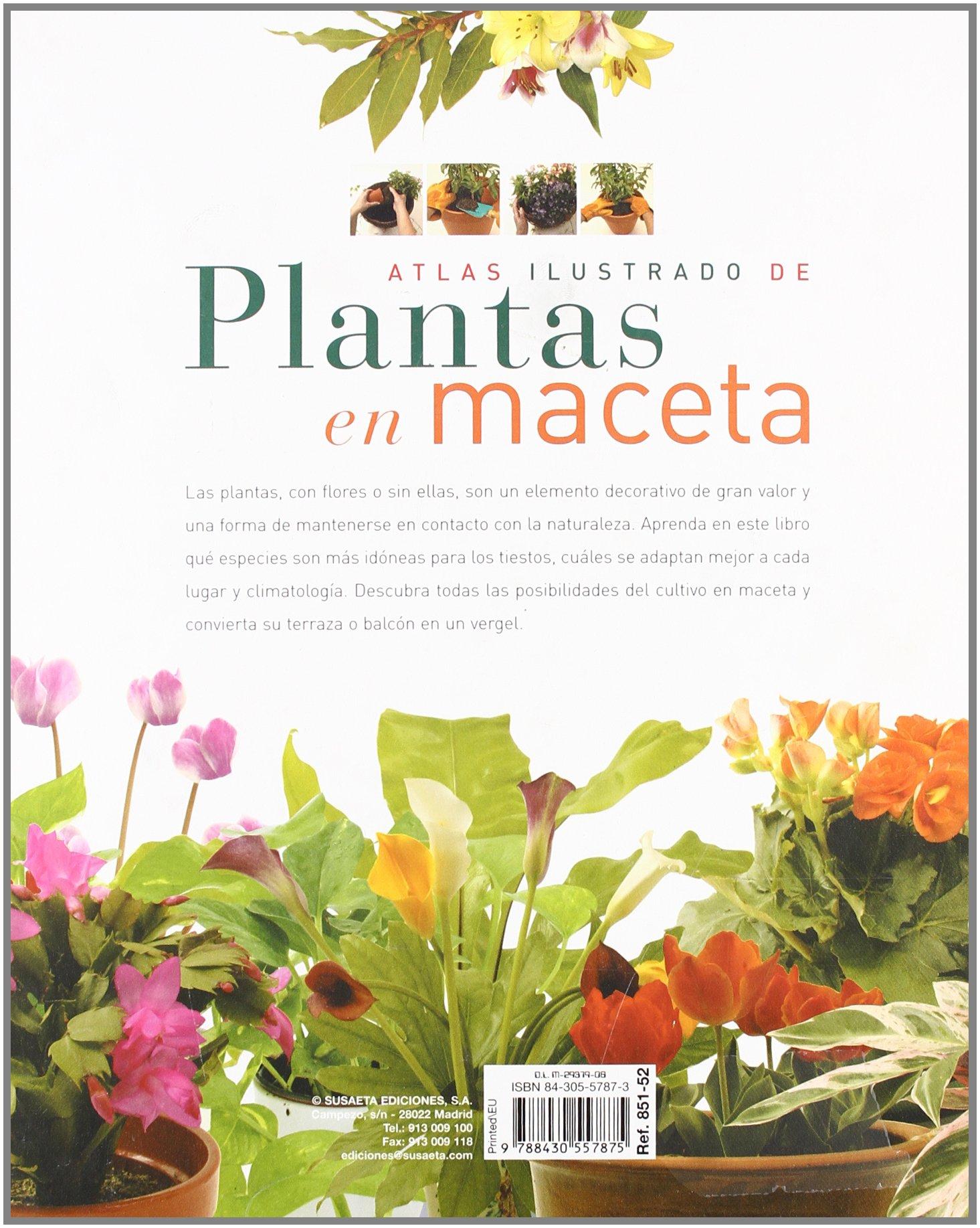 Atlas Ilustrado De Plantas En Maceta Varios 9788430557875