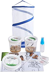 Nature Gift Store Live Butterfly Kit: Shipped with 10 Painted Lady Caterpillars Now- Pop Up Cage