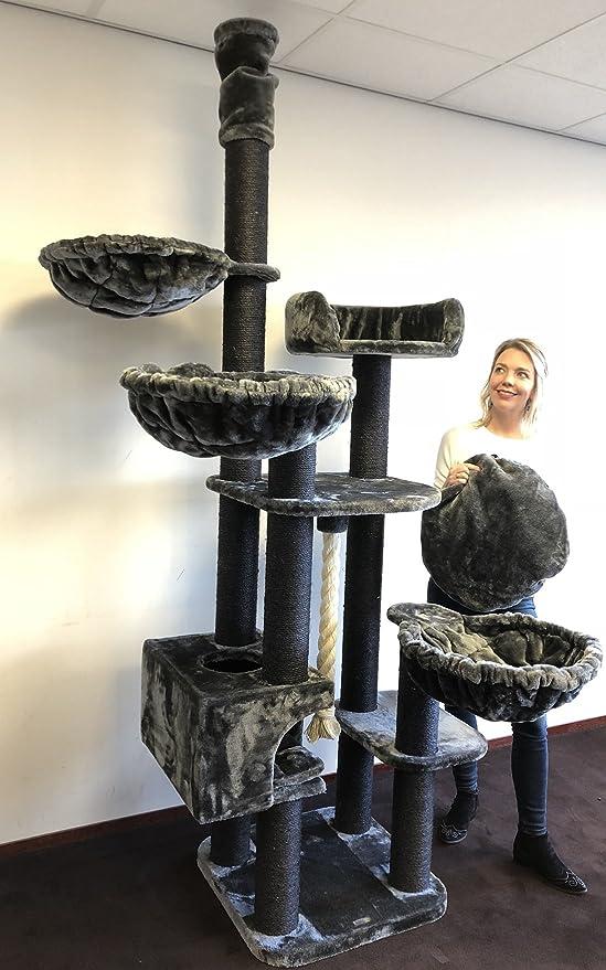 Rascador para gatos grandes Catdream de Luxe Blackline Gris oscuro Maine Coon Hasta el altura de Techo Alto de seulo alturo arbol xxl gato gigante sisal casa torre Árboles rascadores con hamaca:
