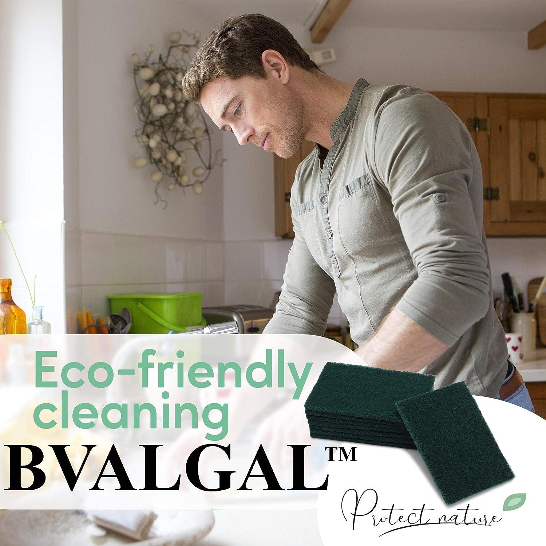 B-Valgal Scouring Pad 10 Pack