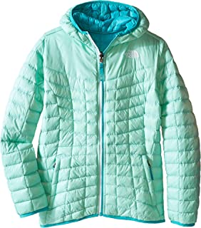 b599693e4 North Face Jackets On Sale