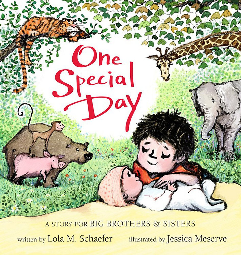 One Special Day: A Story for Big Brothers and Sisters ebook