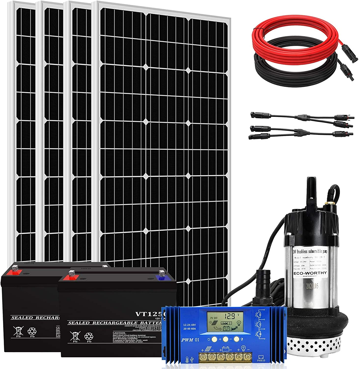 Complete DC 24V Solar Pump System with 100Ah Battery