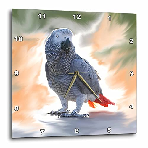 3dRose African Grey Parrot Wall Clock, 10 by 10-Inch