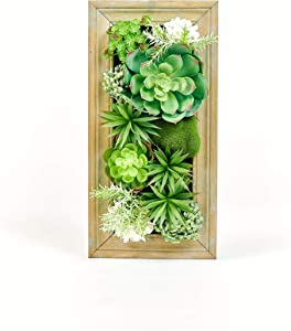 Room & Bloom Artificial Succulent Wall Art Flower Decor Kitchen Decorations Lounge Room Dining Room Picture 3D Living Room Floral Framed Fake Faux Hanging Succulents House Decor Green Hanger 20