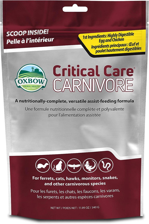 Oxbow Animal Health Critical Care, Carnivore, 340 Gram Bag (529.15010.3)