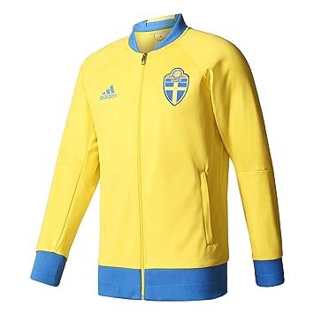 4ac283bfa7dd adidas Svff Anth JKT K Sweatshirt Asociación Sueca de Fútbol für Herren,  Gelb (Amaril
