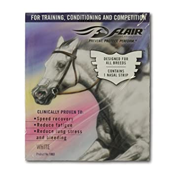 Amazon.com: Flair Equine Nasal Strips - 1 Ct Black: Health ...
