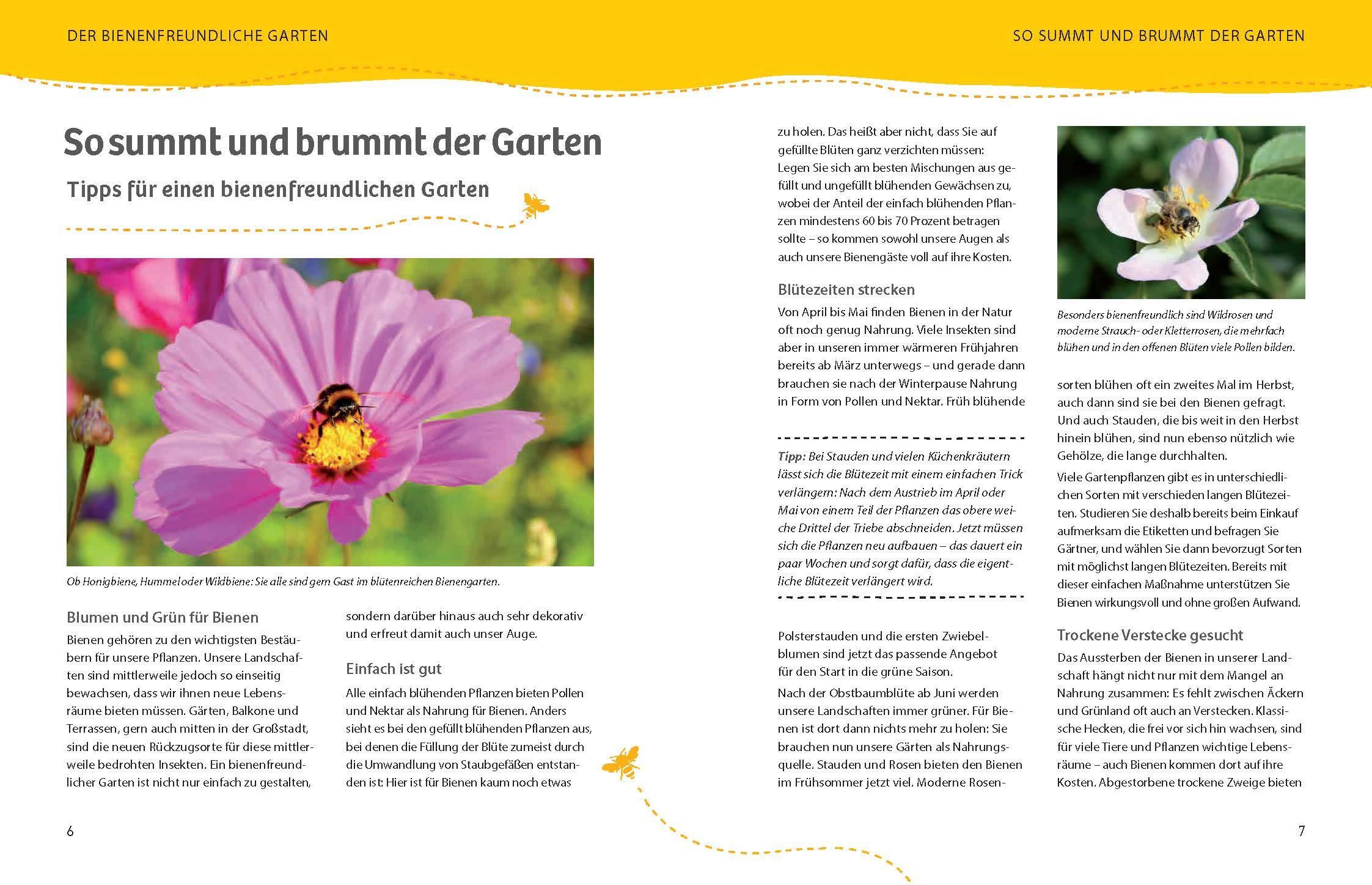 Bienenparadiese Fur Garten Balkon 9783961283538 Amazon Com Books