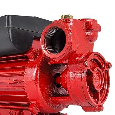 Color : 220V Pompe /À Huile De Transfert Poign/ée Ergonomique Pompe Aspirante Dhuile ARCH Monotour 220 V // 24 V Diesel Pompe Diesel De Transfert for Applicable Diesel//K/éros/ène