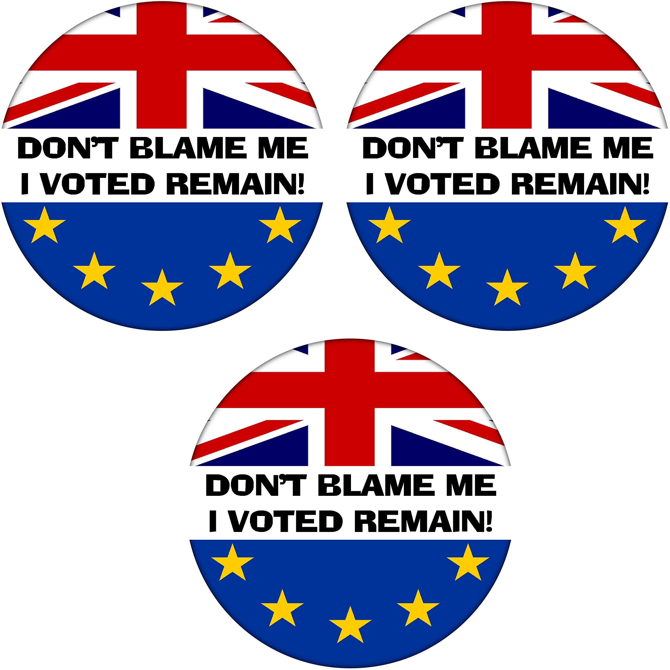 You Can/'t Blame Me I Voted Remain Passport Holder Cover