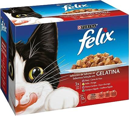Purina Felix Gelatina comida para gatos Selección Surtido de ...