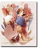 Ocean Starfish Sea Shell Beach Bathroom # 5 Wall Picture 8x10 Art Print