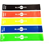Resistance Loop Band Full Set of 5 Levels - BlueSky 001 Professional-Grade Fitness Bands for Yoga, Pilates, Dance, Strength, Therapy Stretch and Work Out - Exercise Manual and Carry Bag Included - Great Valentine's Day Gift for your Loves!