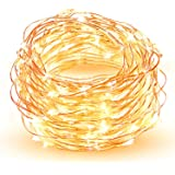 LED String Lights, HOPDAY Copper Wire Lights For Seasonal Decorative Gardens Christmas Holiday Wedding Parties Home Bedroom –Warm White (100 leds 33 ft, low voltage plug)