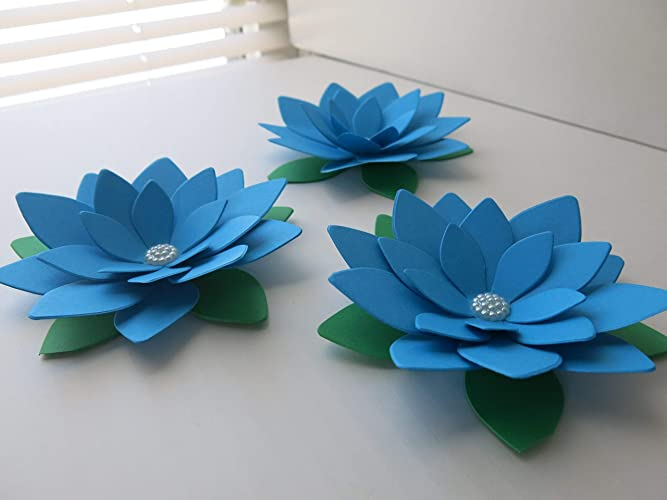 Amazoncom 3 Big Blue Lotus Flowers 4 Bright Water Lily Floral