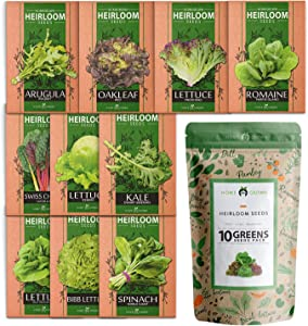 10 Heirloom Lettuce and Leafy Greens Seeds - 1500 Seeds - Non GMO Seeds for Planting - Kale, Spinach, Butter, Oak, Romaine, Iceberg, Bibb, Arugula | Hydroponic Home Vegetable