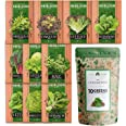 10 Heirloom Lettuce and Leafy Greens Seeds - 1500 Seeds - Non GMO Seeds for Planting - Kale, Spinach, Butter, Oak, Romaine, I
