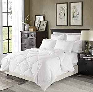downluxe Lightweight White Down Comforter Queen Size - Summer Weight Down Duvet Inserts,230 Thread Count 550+ Fill Power,100% Cotton Shell Down Proof with Tabs