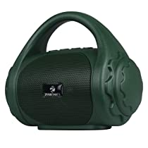 Zebronics Zeb-County Bluetooth Speaker with Built-in FM Radio, Aux Input and Call Function (Green)