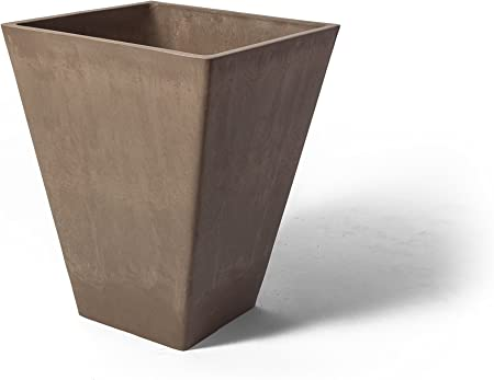 Amazon.com: algreen Valencia Maceta cuadrada, 12 por 35,6 cm ...