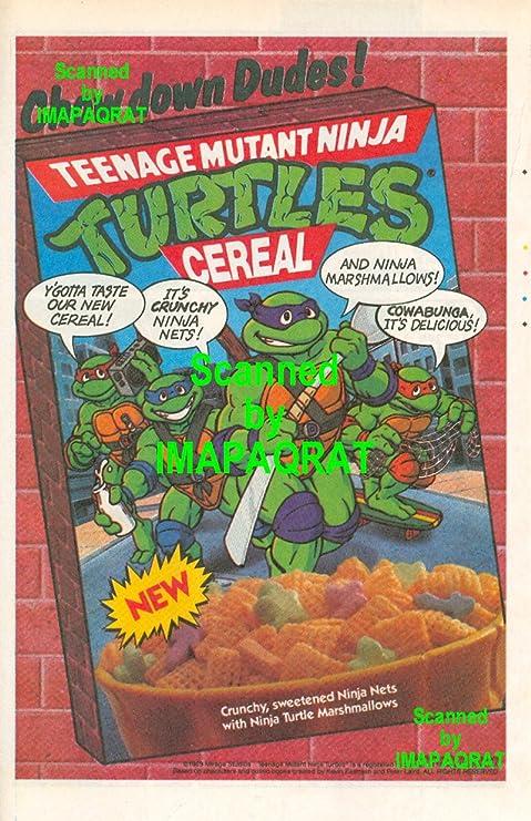 Amazon.com: TMNT Teenage Mutant Ninja Turtles Cereales ...