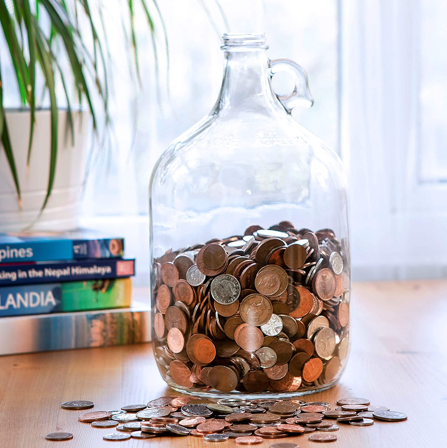 Amazon Com Velucio Glass Money Jar Holds Over 2 500 In Coins Home Improvement
