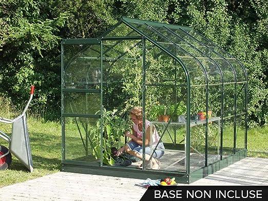 Invernadero de jardín de cristal Orion 5 m² – verde: Amazon.es: Jardín