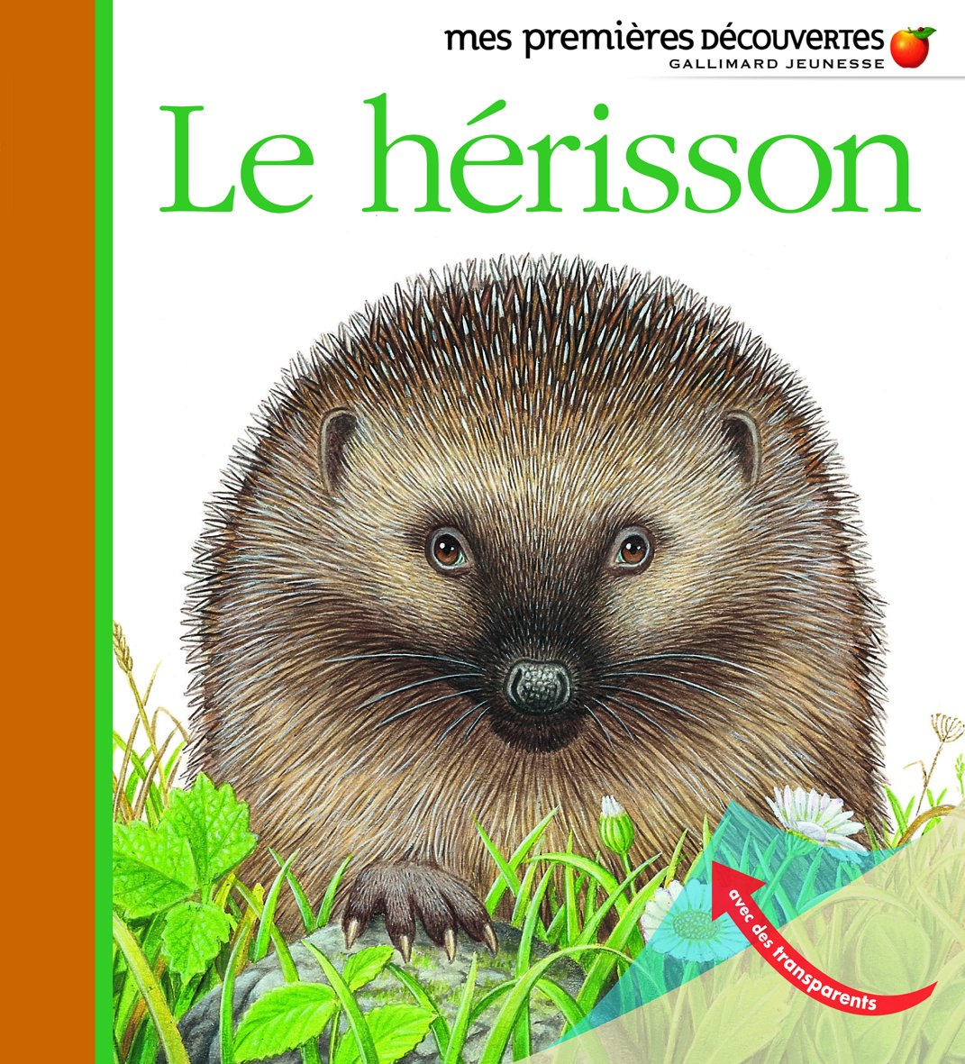 Le Herisson Amazon Fr Pierre De Hugo Livres