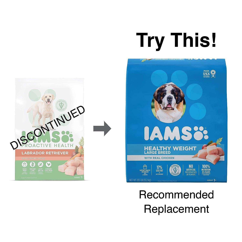 DISCONTINUED IAMS ProActive Health Adult Labrador Retriever Dry Dog Food, Chicken Flavor, 15 Pound Bag
