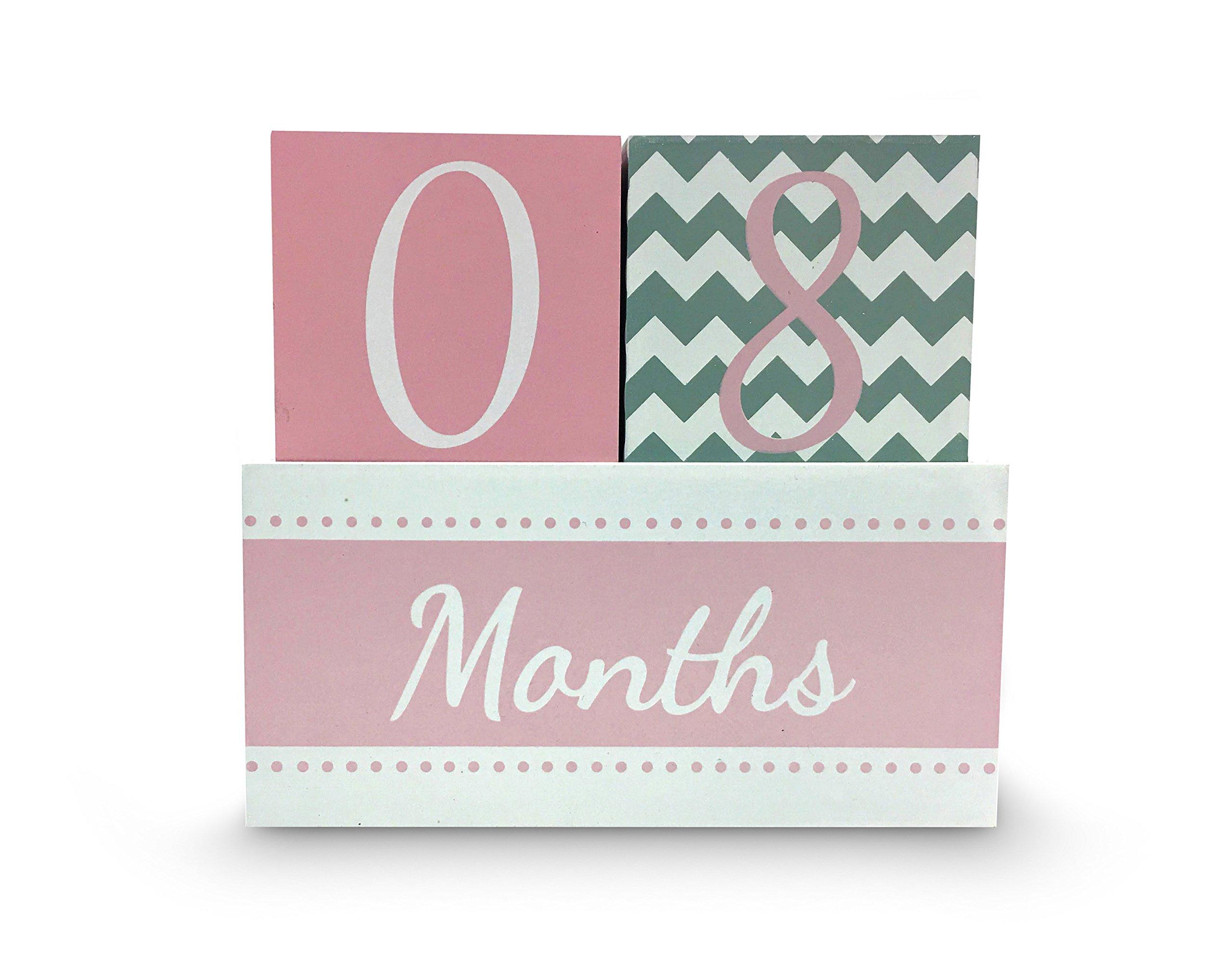Milestone Age Wood Block Set for Baby Photo (Pink)