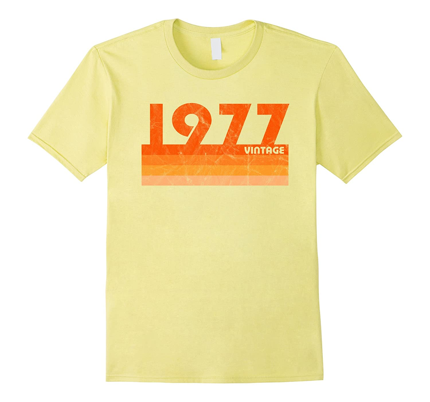 1f7060e4 ... Birthday Shirt Classic: Vintage Retro 1977 T-Shirt 41 Yrs Old Bday 41st  Birthday