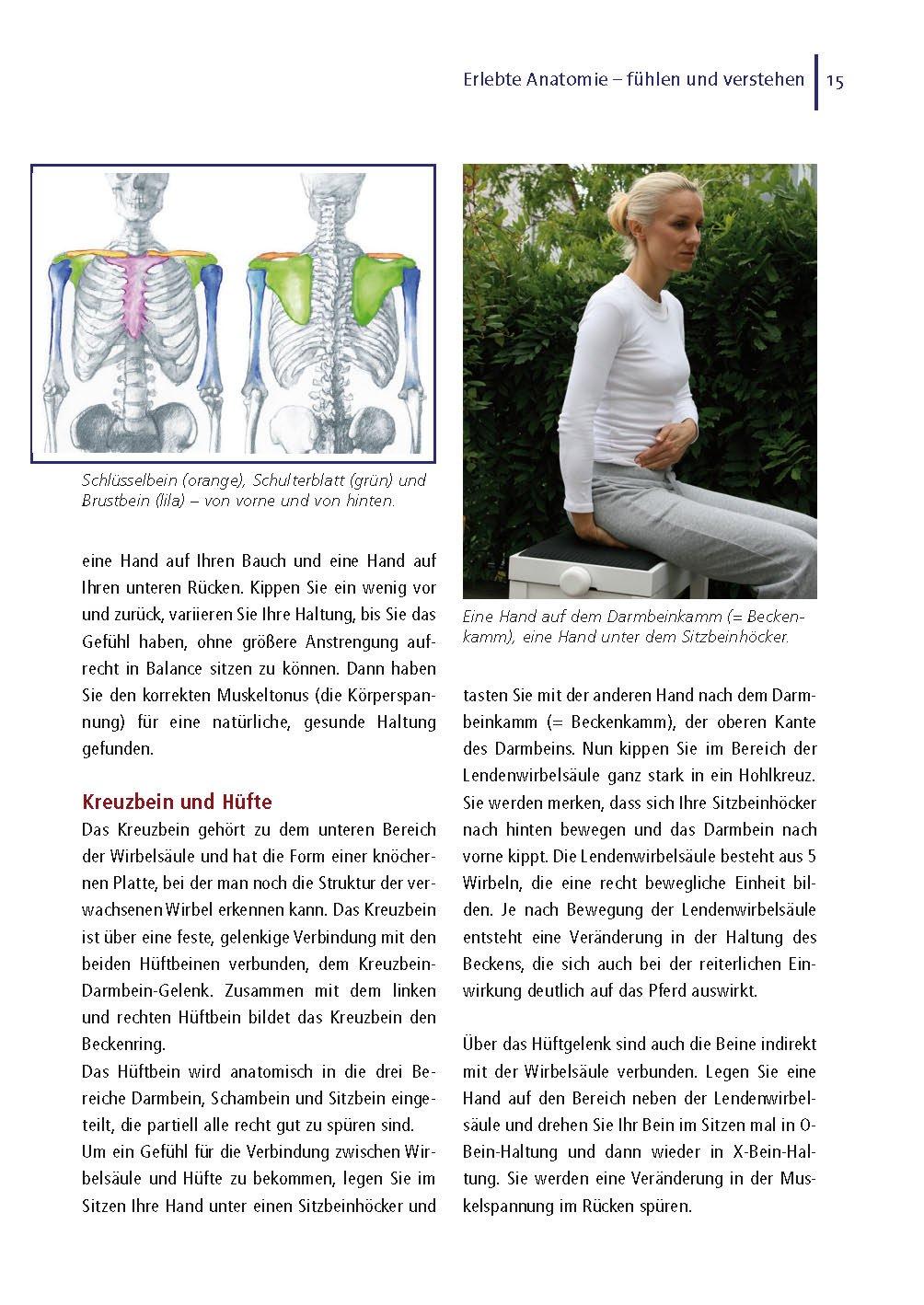 Gemütlich Anatomie Der Unteren Rücken Und Hüfte Fotos - Physiologie ...