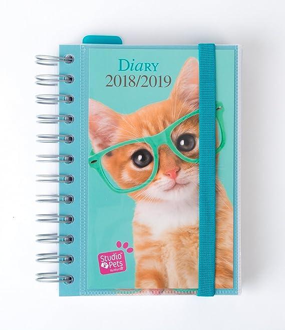 Grupo Erik Editores Studio Pets Gato- Agenda escolar 2018-2019 día página multilingüe, 11.4 x 16 cm