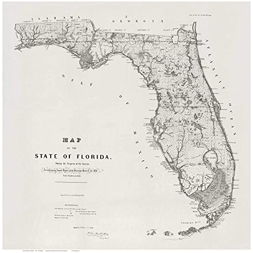 Map State Of Florida.Amazon Com Florida 1856 State Map By Surveyor General Westcott