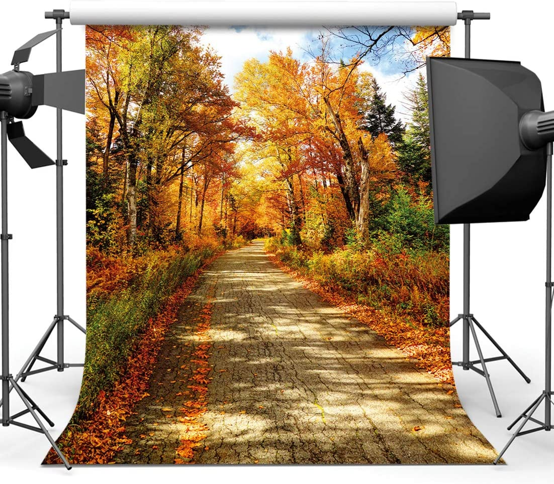 SJOLOON 10x10ft Autumn Backdrop Golden Fallen Leaves Real Natural Landscape Photography Background for Party Decoration Banner Baby Shower Studio Props 11631