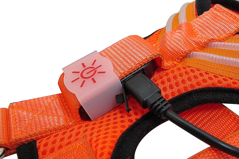 pile rempla/çable pile bouton CR2032 Harnais /à LED pour chiens en maille filet et sangle en nylon souple AmoreDiPET