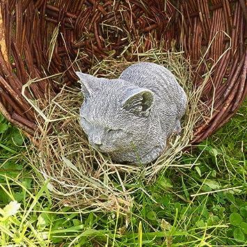 Antikas - gato fundición de piedra como decoración de terraza patio hogar - decoración gatos - figuras animales de hormigón: Amazon.es: Jardín