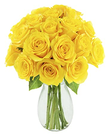 Amazon Kabloom Bouquet Of Sunshine Yellow Roses 18 Fresh Cut