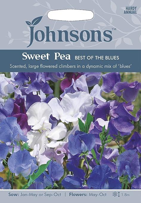 Johnsons UK//JO//FL Morning Glory Skylark Mixed