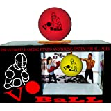 Vo Ball-The Ultimate Home Fitness, Boxing and Martial Arts System for All Ages #voball